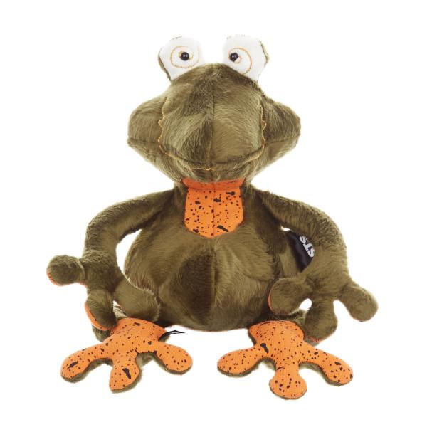 Frog Doc